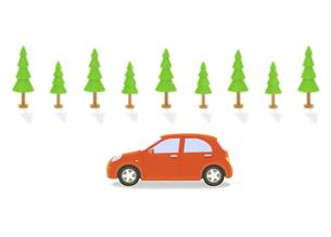 赤い車と街路樹の写真素材 [FYI04808892]
