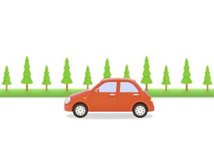赤い車と街路樹の写真素材 [FYI04808897]