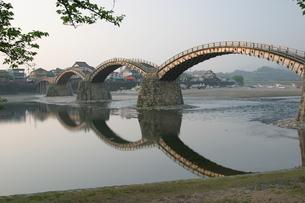 錦帯橋と川の反射の写真素材 [FYI04809114]
