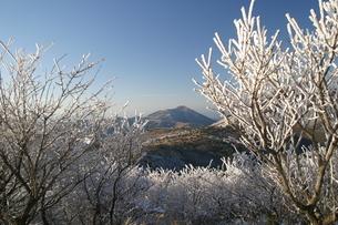 霧氷と山の写真素材 [FYI04809116]