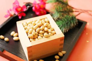 節分の豆まきの写真素材 [FYI04809251]