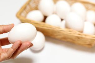 手で持った卵の写真素材 [FYI04809300]