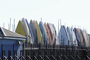 ウィンドサーフィンのボードが並ぶマリーナのボートヤードの写真素材 [FYI04809327]