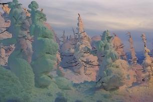 山形蔵王 樹氷のライトアップの写真素材 [FYI04809500]