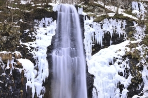 玉簾の滝 山形県の写真素材 [FYI04809523]