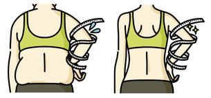 肥満の女性とスリムな女性の二の腕-メジャーのイラスト素材 [FYI04809641]