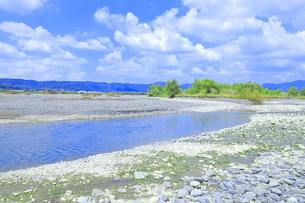 夏の渇水期の大井川の支流の写真素材 [FYI04809761]