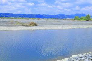 夏の渇水期の大井川の支流の写真素材 [FYI04809766]