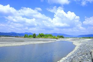 夏の渇水期の大井川の支流の写真素材 [FYI04809767]