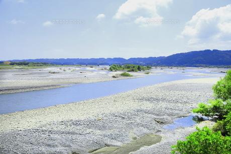 夏の渇水期の大井川の写真素材 [FYI04809776]