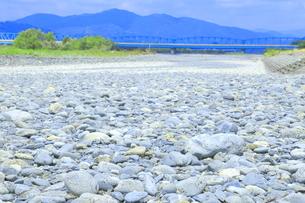 夏の渇水期の大井川 の写真素材 [FYI04809808]