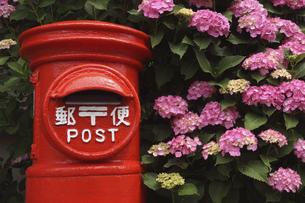 鎌倉の紫陽花と赤いポストの写真素材 [FYI04809932]