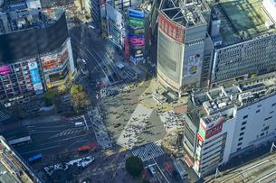 渋谷の街並みの写真素材 [FYI04810015]