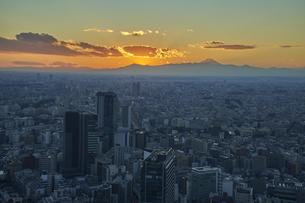 渋谷スカイより望む東京の夕景の写真素材 [FYI04810020]