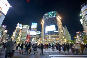 渋谷スクランブル交差点の夜景の写真素材 [FYI04810027]