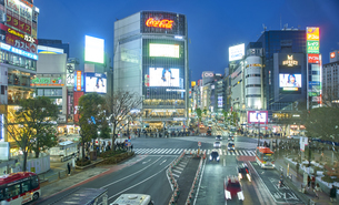 渋谷スクランブル交差点の夕景の写真素材 [FYI04810037]