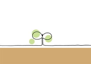 発芽の手描き線画イラストのイラスト素材 [FYI04810270]