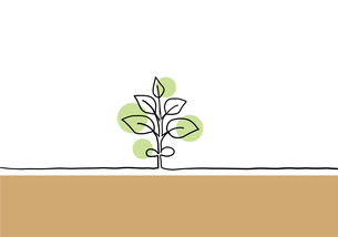 植物の手描き線画イラストのイラスト素材 [FYI04810272]