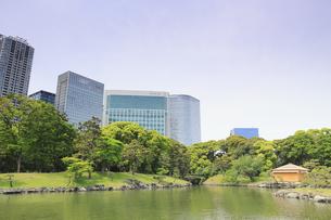 浜離宮庭園の松の御茶屋と汐留シオサイトの写真素材 [FYI04810300]