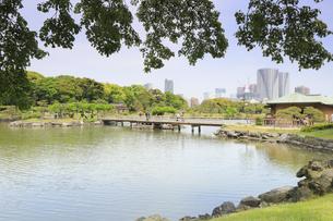 浜離宮庭園のお伝い橋と勝どきのタワーマンションの写真素材 [FYI04810330]