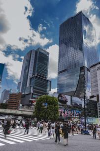 渋谷駅前スクランブル交差点と商業ビル群の写真素材 [FYI04810397]