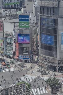 渋谷駅前スクランブル交差点と商業ビル群の写真素材 [FYI04810415]