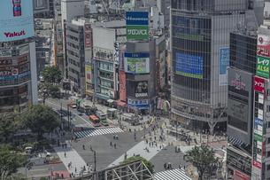 渋谷駅前スクランブル交差点と商業ビル群の写真素材 [FYI04810416]