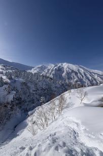 北海道 十勝岳連峰の冬の風景の写真素材 [FYI04810426]