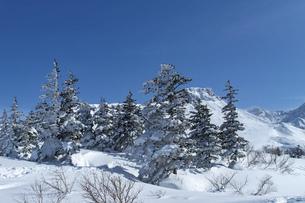 北海道 十勝岳連峰の冬の風景の写真素材 [FYI04810486]