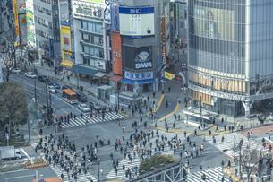 渋谷駅前スクランブル交差点と商業ビル群の写真素材 [FYI04810501]