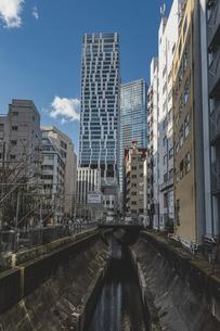 渋谷川と高層ビル群の写真素材 [FYI04810506]