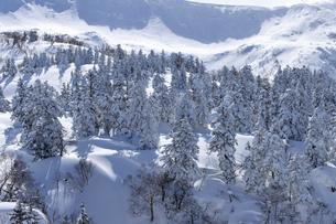 北海道 十勝岳連峰の冬の風景の写真素材 [FYI04810517]