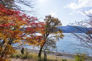 【栃木県】奥日光 秋の中禅寺湖の写真素材 [FYI04810553]