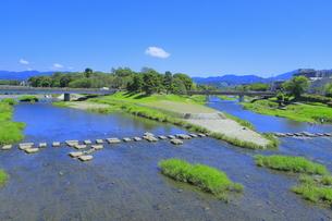 賀茂川と高野川の合流点の写真素材 [FYI04810789]