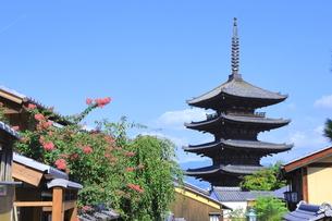 夏の八坂通と八坂の塔の写真素材 [FYI04810849]