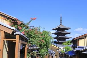 夏の八坂通と八坂の塔の写真素材 [FYI04810850]