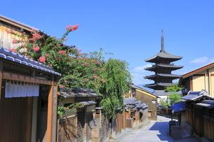 夏の八坂通と八坂の塔の写真素材 [FYI04810852]