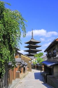 夏の八坂通と八坂の塔の写真素材 [FYI04810859]