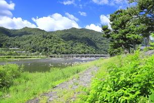 夏の嵐山と渡月橋の写真素材 [FYI04810886]