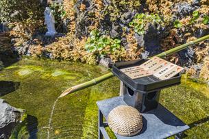 長谷寺 弁天窟入口前の池と祈願札の写真素材 [FYI04811153]