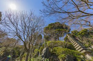 長谷寺 放生池脇の石塔の写真素材 [FYI04811154]
