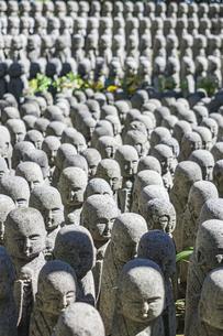 長谷寺の境内に立ち並ぶ無数の地蔵の写真素材 [FYI04811157]
