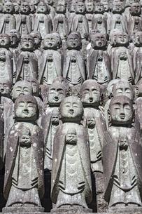 長谷寺の境内に立ち並ぶ無数の地蔵の写真素材 [FYI04811159]