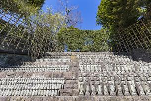 長谷寺の境内に立ち並ぶ無数の地蔵の写真素材 [FYI04811161]
