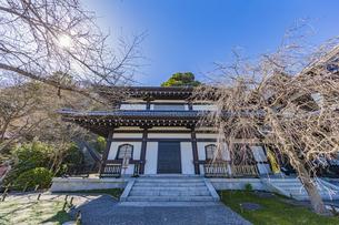観音造立1300年を迎えた長谷寺の観音ミュージアムの写真素材 [FYI04811183]