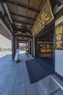 観音造立1300年を迎えた長谷寺の観音堂の写真素材 [FYI04811213]