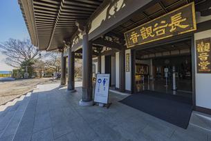 観音造立1300年を迎えた長谷寺の観音堂の写真素材 [FYI04811214]