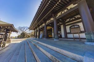 観音造立1300年を迎えた長谷寺の観音堂の写真素材 [FYI04811217]