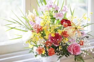 窓に飾られた花の写真素材 [FYI04811245]