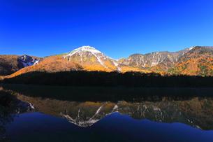 秋の上高地 大正池より紅葉と冠雪の焼岳の写真素材 [FYI04811260]
